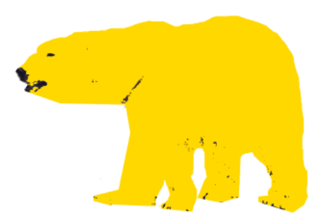 gul bjørn