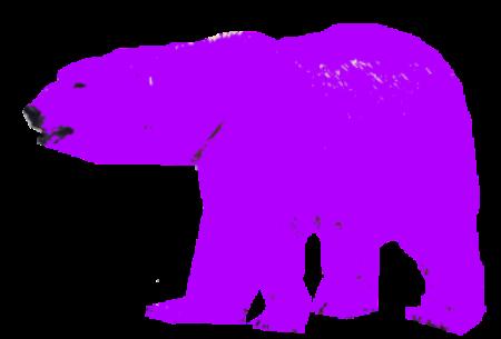 lilla bjørn