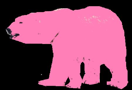 lyserød bjørn